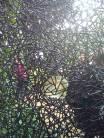 Cancello Peggy Guggenheim